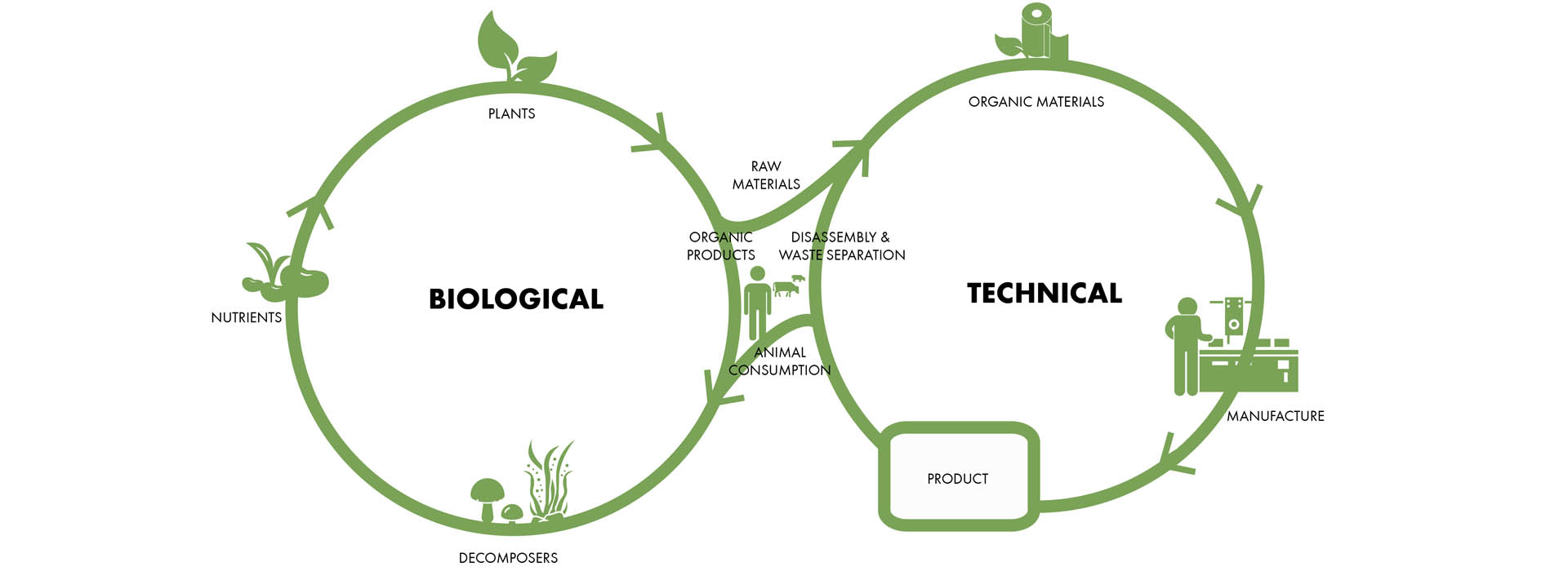 Design for Circular Economy